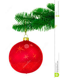 red christmas ornament on noble pine tree bough royalty free stock
