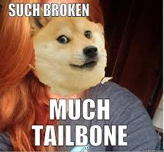 Doge Girl Meme - doge girl quickmeme