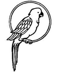 parrot coloring pages parrot on branch coloring page рисунки pinterest stenciling