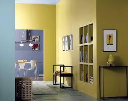 interior wall paint colors pilotproject org