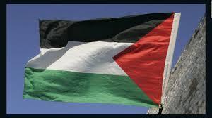 Palistinian Flag Palestinian Boy Fatally Shot During West Bank Clashes Cnn Video