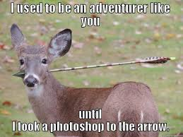Funny Deer Memes - skyrim deer quickmeme