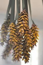 Glitter Spray For Christmas Decorations by 74 Best Pine Cone And Acorn Crafts Images On Pinterest Diy