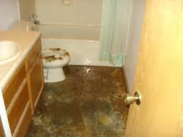 Ceiling Water Damage Repair by Water Damage Bathroom U2013 Justbeingmyself Me