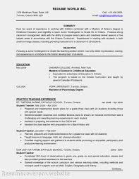 Sample Resume Objectives Teaching Position by Essay Writing Software Video U0026 Reviews Creative Mind Series