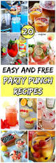 20 easy and free party punch recipes for a crowd diy u0026 crafts