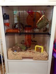 Zurich 4 Piece Bedroom Set Qute Hamster U0026 Gerbil Cage Stylish Hamster House
