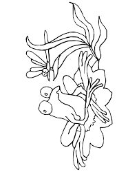 cartoon frog coloring pages kids coloring