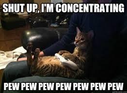 Pew Pew Pew Meme - shut up i m concentrating pew pew pew pew pew pew pew gamer cat