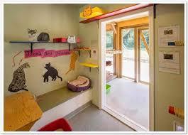 Interior Pet Door For Cats Facility Design And Animal Housing Uc Davis Koret Shelter