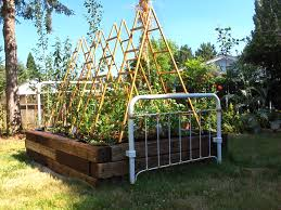 fresh best vegetable garden trellis designs and idea 7555