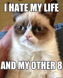 Life Meme - i hate my life cat meme cat planet cat planet