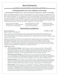 business analyst resume template business analyst resume templates sle vision well depict format