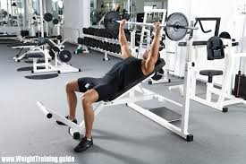 overview of training programs for women weight training guide