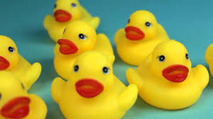 toy rubber ducks bath unboxing youtube