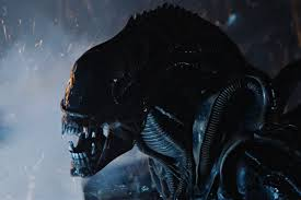 alien u0027 franchise ranking every movie from worst to best