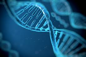 Dna Mapping Citizens Of Kuwait Must Now Register Their Dna With The Government
