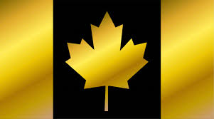 canada flag flag of canada gold icons creative market