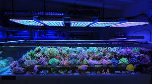 led lights for coral tanks aquarium led lighting 2017 2018 orphek