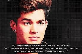 Adam Lambert Memes - adam lambert quotes adam lambert gif by grocage find download