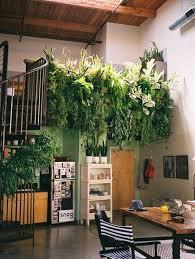 Best Plants For Vertical Garden - 172 best plants images on pinterest indoor gardening gardens