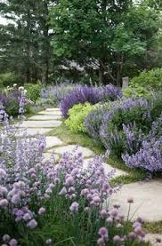 Rustic Landscaping Ideas by 20 Ways To Landscape With Shrubs Limes Purple And Gardens