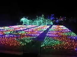 christmas lights in asheville nc north carolina arboretum winter lights youtube
