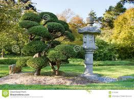 albero giardino lanterna ed alberi di pietra in giardino giapponese immagine stock
