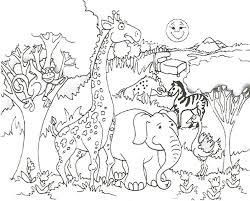 coloring pages realistic animals animal zoo free farm safari