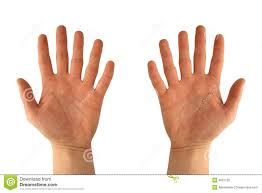 hands with six fingers stock photo image 4091720