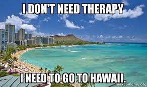 Hawaii Memes - i dont need d6d4k9 jpg
