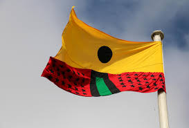 29 Star Flag Larry Achiampong Pan African Flag For The Relic Travellers
