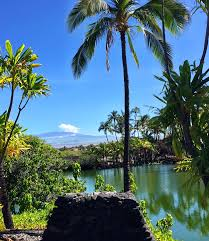 mauna lani bay hotel and bungalows home facebook