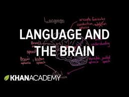Change Blindness Youtube Language And The Brain Aphasia And Split Brain Patients Video