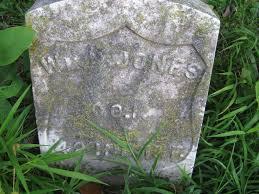 Princeton Cemetery Princeton I O O F Cemetery U2013 Suvcw Foster Camp No 2
