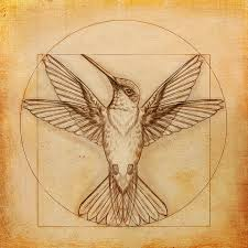leonardo da vinci hummingbird drawing tattoo contest