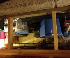 crawl space storage diy project blog