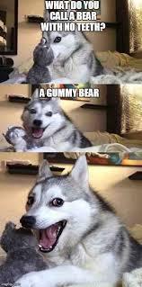 Pun Dog Meme - pun dog meme husky blank