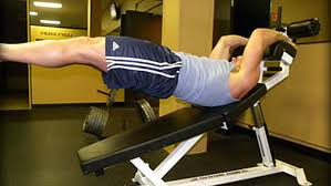 Decline Bench Leg Raises Best Of Abs T Nation