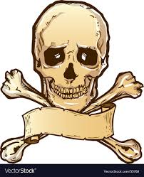 skull crossbones royalty free vector image