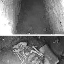 th e chambre b osteometric measurements of bones bone descriptive