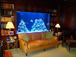 fish tank big aquarium for home fearsome images inspirations best