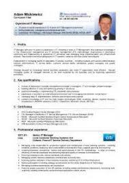 standard cv format pdf writing a descriptive essay in third person modern english paper