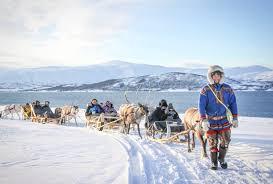 package 1 long reindeer sledding reindeer feeding and sami