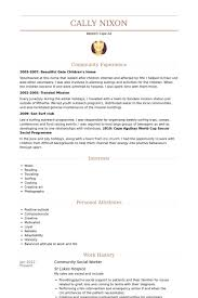 Personal Attributes Resume Examples by Social Worker Resume Samples Visualcv Resume Samples Database