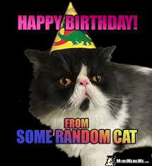 Random Cat Meme - happy birthday cats catty b day humor funny birthday greetings