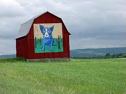 dog barn becker barn of springwater ny hemlock and canadice lakes