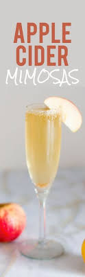 chilled sparkling apple cider recipe that tastes amazing make it a