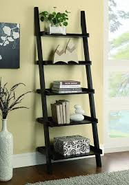 Bookcase Ladder And Rail by Amazon Com Coaster Ladder Bookcase Cappuccino Kitchen U0026 Dining