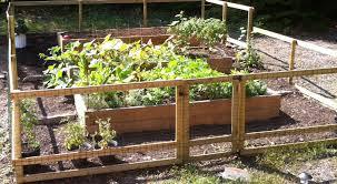 Advantage Of Raised Garden Beds - advantages of raised bed gardening home harvest kitchen gardens